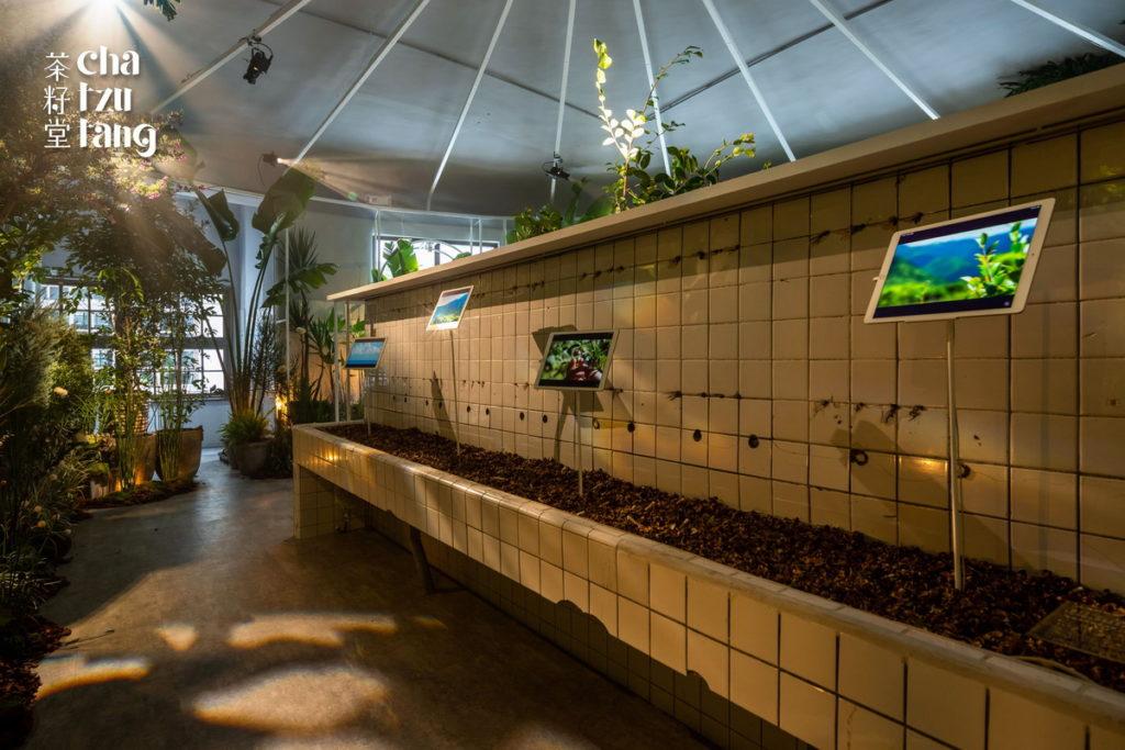 茶籽堂「大地癒所」品牌年度特展。