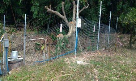 「110年度補助地方政府輔導農民辦理防治臺灣獼猴危害農作計畫」防治獼猴危害農作物神器 電圍網補助起跑